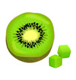 sliced on half and diced kiwi vector image