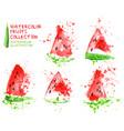watermelon slice set watercolor hand draw vector image