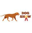 dog show award with ribbon canine animal design vector image
