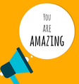 You Are Amazing in Speech Bubble with Megaphone vector image