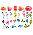 Beautiful Watercolor flower set vector image