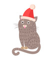 closeup of funny cat with hat vector image