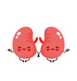 strong cute healthy happy kidneys vector image vector image