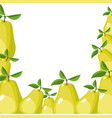 colorful background of realistic pear fruits vector image