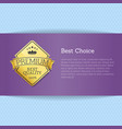 best choice brochure design place for text label vector image vector image