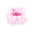 flamingo on watercolor pink striped background vector image vector image