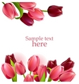 floral frame with tulips vector image vector image