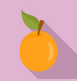 fresh apricot icon flat style vector image vector image