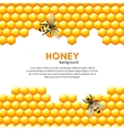 Honey bee background vector image