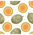 melon seamless pattern isolated on white vector image vector image
