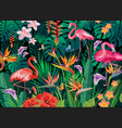 tropical background from tropical flowers and vector image vector image