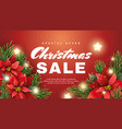 christmas sale banner with christmas star flower vector image