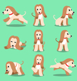 Cartoon character afghan hound dog poses vector image