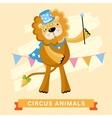 Circus Lion animal series vector image