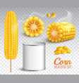 realistic corn transparent set vector image vector image