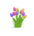 spring floral tulip bundle with fresh colorful vector image vector image