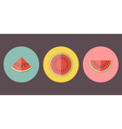 Watermelon Icon Collection vector image vector image