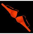 Red bra vector image