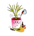 improper care for home plants vector image