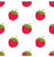 raspberry seamless pattern isolated on white vector image