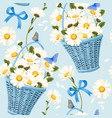 seamless baskets of camomiles vector image