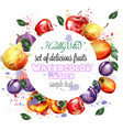 watercolor fruits wreath apple plum pear vector image vector image