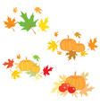 thanksgiving day - leaves with pumpkin vector image