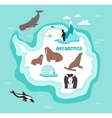 Antarctic continent map with wildlife animals vector image