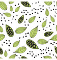 cardamom spice seamless pattern of vector image vector image