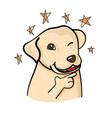 cute labrador dog in confidence pose vector image vector image