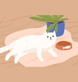 cute white cat lying on carpet flat vector image