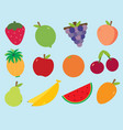 fruity fruits vector image vector image