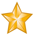 golden star symbol vector image