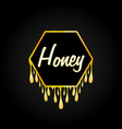 honeycomb and honey dripping on black background vector image vector image