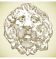 lion heraldic vector image vector image