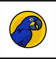 macaw parrot cartoon character icon in circle vector image