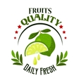 Organic shop or farm badge with fresh lime fruits vector image vector image