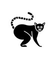 ring tailed lemur black glyph icon vector image