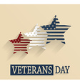 Veterans day design vector image