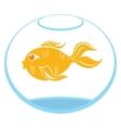 Goldfish symbol vector image