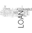 assumable loans and resale value text word cloud vector image vector image