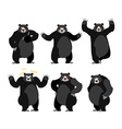 Baribal American black bear set Grizzly various vector image vector image