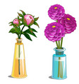 blooming dahlia and non-blooming flower in vase vector image vector image