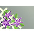 clematis on fence vector image vector image
