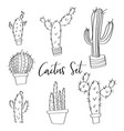 hand drawn cactus set doodles vector image vector image
