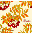 seamless texture autumn branch of rowan leaves vector image vector image