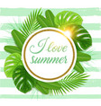 summer tropical background with green palm leaves vector image