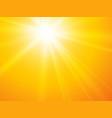 sun rays yellow backgroun vector image vector image