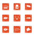 animal diet icons set grunge style vector image vector image
