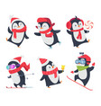 cute penguins cartoon characters basweet wild vector image